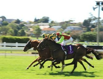 Guide and how to: Bet on French horse races