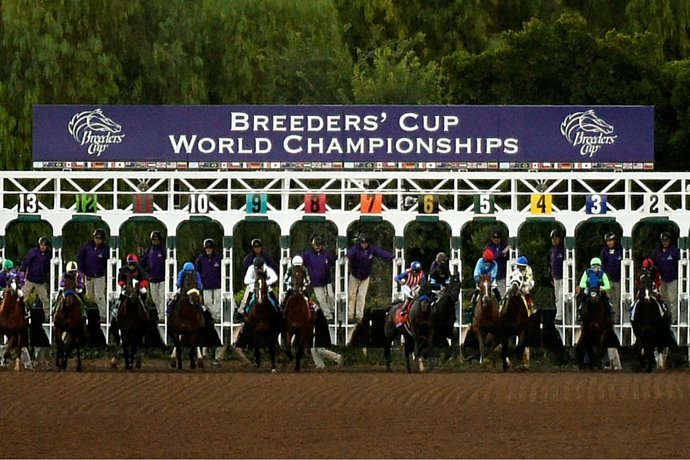 Betting on the 2016 Breeders' Cup