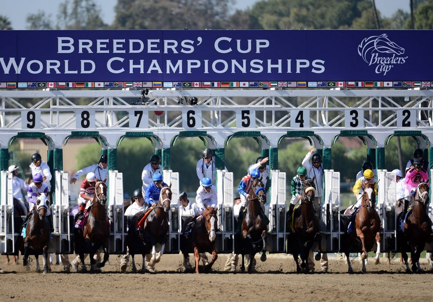 The Breeders' Cup