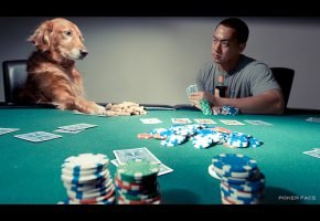 The Best Poker Faces