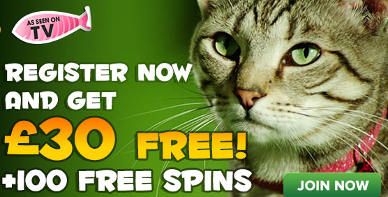 Kitty Bingo Joining Offer