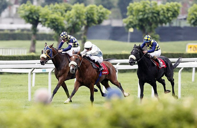 Betting on the 2017 Royal Ascot Races