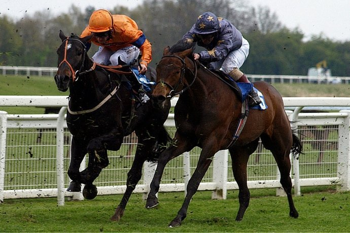 Run to the Death – Should we Ban the Grand National