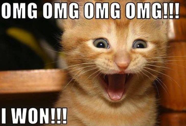 "Here is a gloating cat saying ""OMG I WON!"""