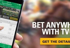 TVG Mobile App – What You Need to Know