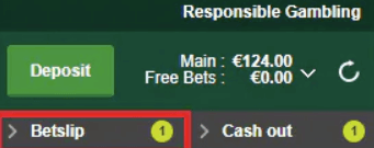how to place a single bet on paddy power